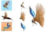 fugl collage 2